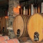 Ekološka vinska klet