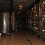 Modernizirana vinska klet
